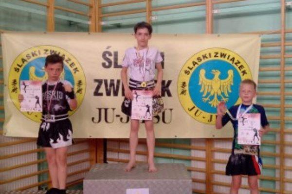 Śląska Liga Kickboxingu